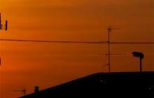 אנטנות סלולריות, תקנות הקרינה וההיבט המשפטי והשמאי
