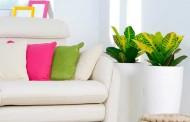 עיצוב הדירה ופנג שואי – השפעת העיצוב על מצב הרוח שלנו